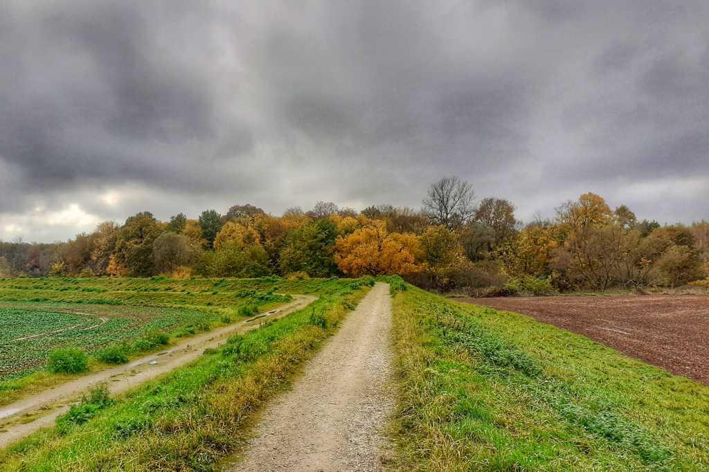 Trasa rowerowa G01 Wałami Bystrzycy i Widawy – 65 km
