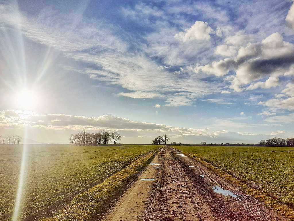 Trasa gravel Wrocław Biskupice Sadowice – G05 45km
