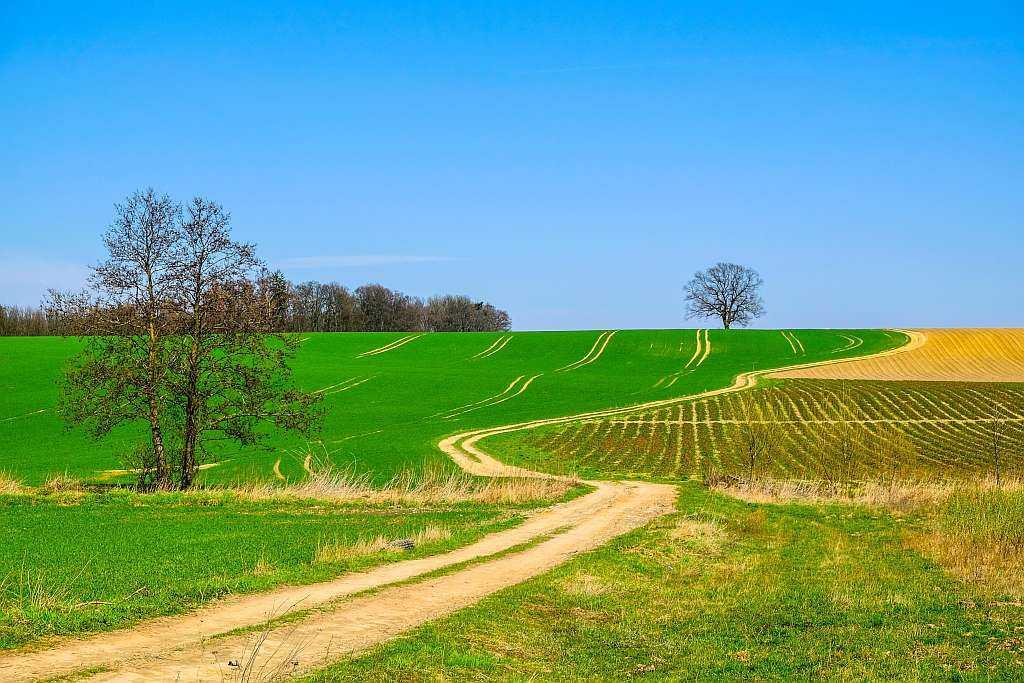 Trasy gravelowe – legenda do opisu i punktacji