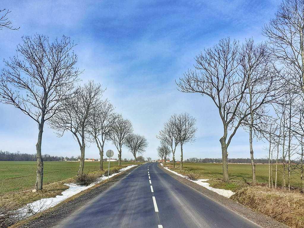 Trasa szosowa Wrocław Pełcznica Lutynia – S01 50 km