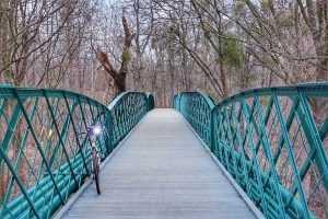 most w parku przy Wilczej