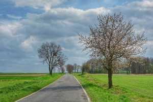 Trasa szosowa Krasków