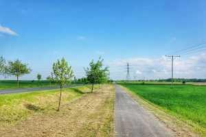 Droga rowerowa Cesarzowice