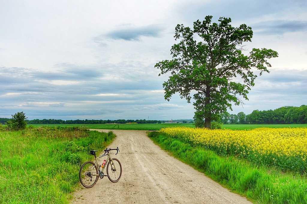 Trasa rowerowa Pracze Odrzańskie