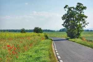 Trasa rowerowa Kuklice