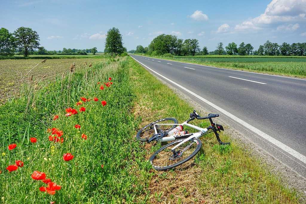 Trasa szosowa Kotowice Żórawina – S16 65km