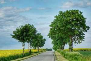 Trasy rowerowe dolny śląsk węgrów