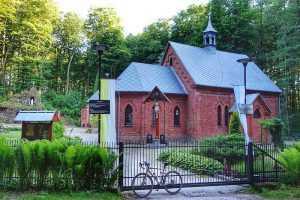 Trzebnica kościół