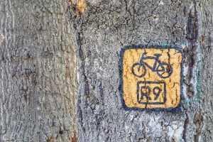 Trasa rowerowa R9