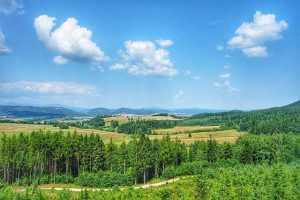 Trasa turystyczna Góry Wałbrzyskie