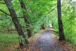 trasa rowerowa Dolina Bystrzycy