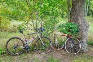 turystyka rowerowa Romnów